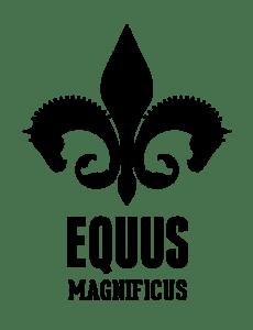 Equus_black