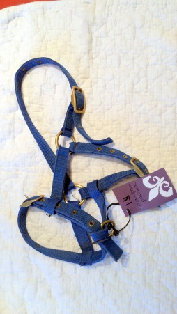 Halter, foal/pony size $1