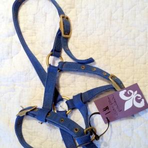 Halter, foal/pony size $1